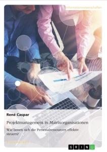 Matrixorganisationen